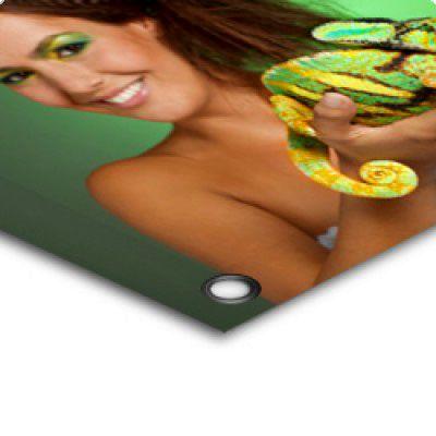 Druck auf PVC Frontlite Premium 550g/qm